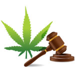 Cannabis cultivation law indicated by hammer