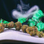 Detail of dried cannabis buds (Green Crack God strain) arranged
